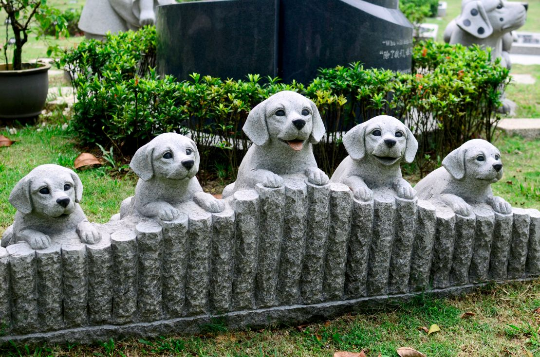 Pet memorial garden funerals malaysia i transparent pricing your trusted partner - Gardening for pets ...